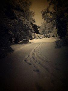 the path ahead kopie